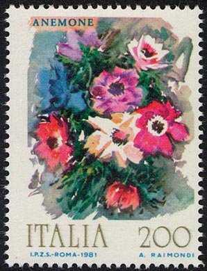Fiori d'Italia - anemone