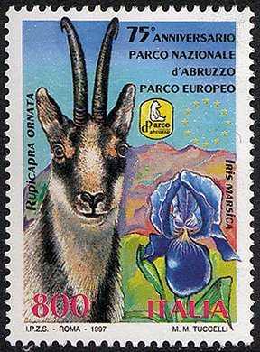 75° Anniversario del Parco Nazionale d'Abruzzo - Flora e fauna - Camoscio e Giaggiolo