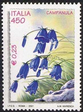 «L'ambiente e la natura» - Flora  - Campanula