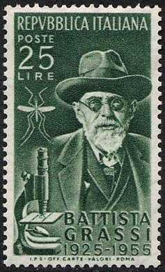 30° Anniversario della morte del biologo Battista Grassi - ritratto