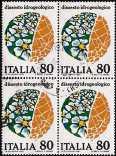 1981 - Il dissesto idrogeologico